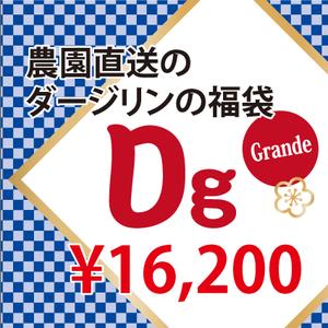201126福袋Dg